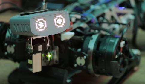 Robot do zadań specjalnych