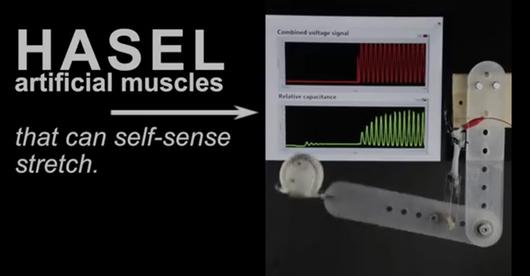 Sztuczne mięśnie dla maszyn